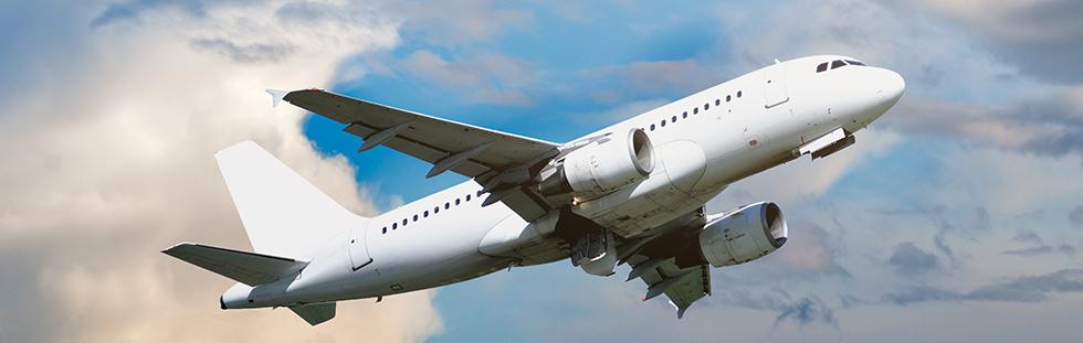 Yurtdışı Uçak Kargo Şirketi | Acil Kargo Hava Kargo Evcil Hayvan Pet Kargo Almanya Amerika Belçika Rusya İtalya İsviçre Hollanda Azerbeycan Çin Dubai Kargo Taşımacılığı